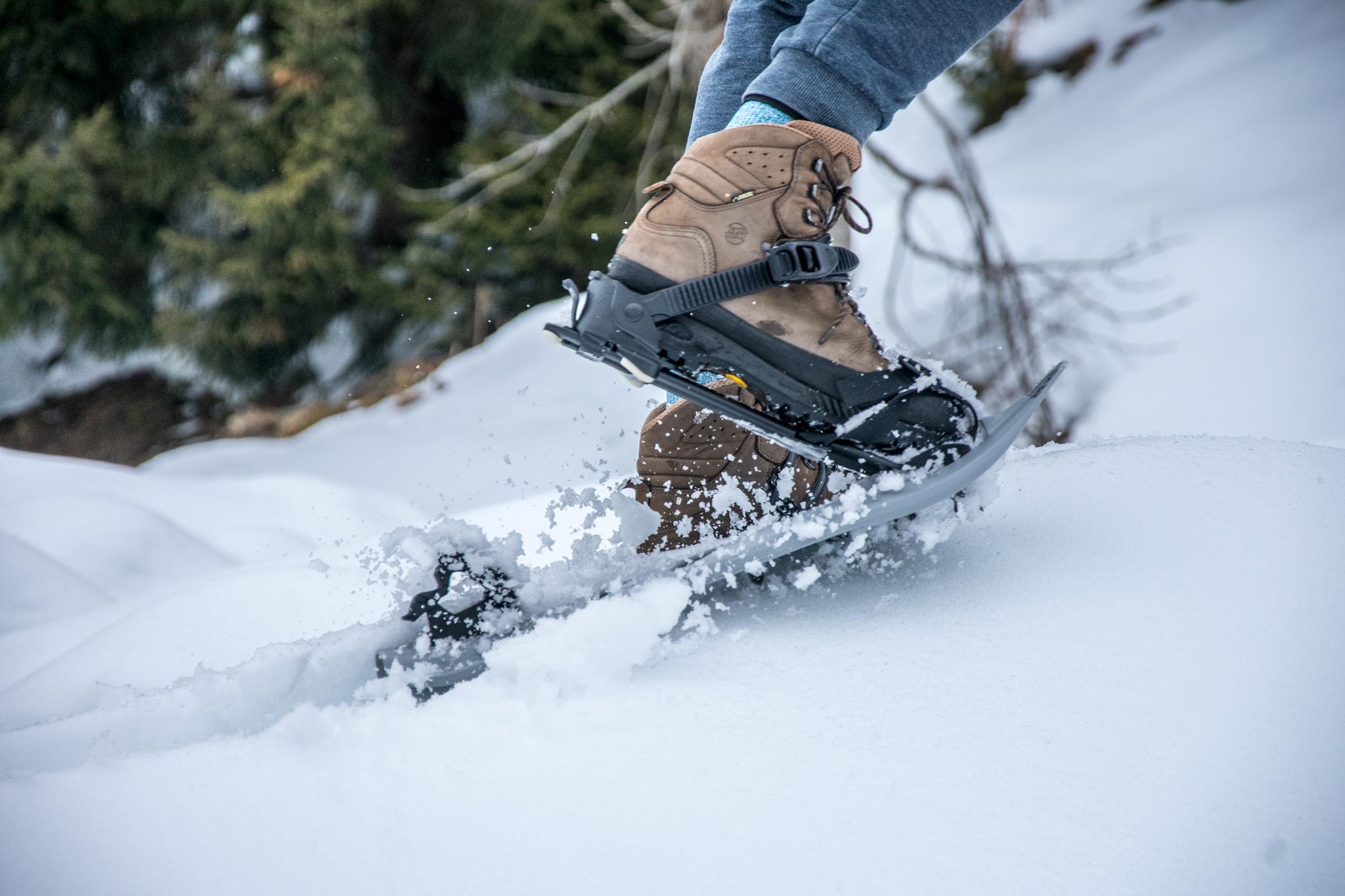 Schneeschuh Tour im Schwarzwald